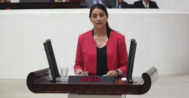 HDP'li Feleknas Uca: Erdoğan, Ezidi halkını tehdit etmekten vazgeçmeli