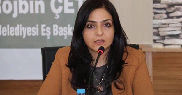 HDP'li Ertan: Siyasi operasyonlarla karşı karşıyayız