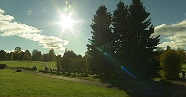 İsveç'te ilk 'doğal ve tarafsız' mezarlık alanı hizmette