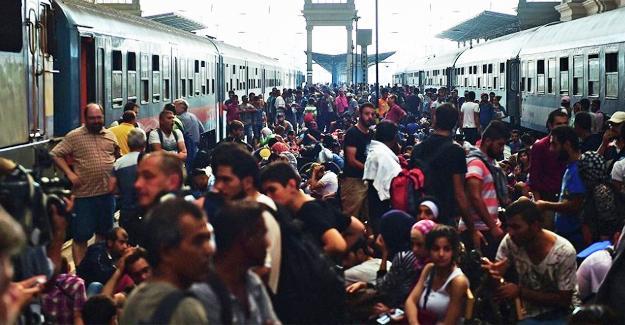 Macaristan'daki 'sığınmacı referandumu'na yetersiz katılım