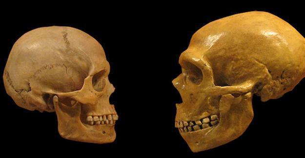 Şizofreni insanlar Neandertallerden ayrıldığında ortaya çıktı