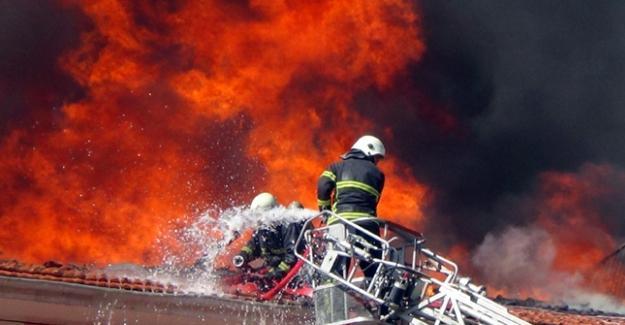 İzmir'de mandalina paketleme tesisinde yangın
