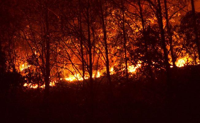 CHP'li Yarkadaş'tan Sürmene'deki yangına tepki