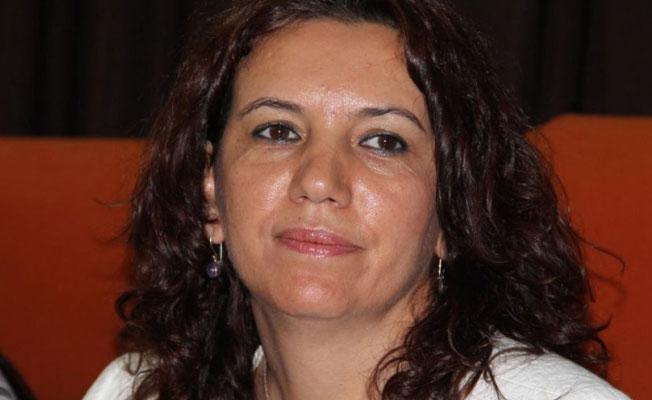 HDP'li Irmak: Mecliste Hakkari ili temsil edilmemektedir