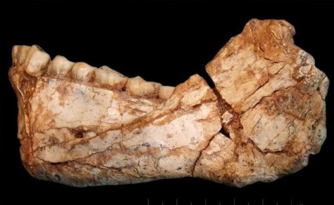 Modern insana ait en eski fosiller Fas'ta bulundu