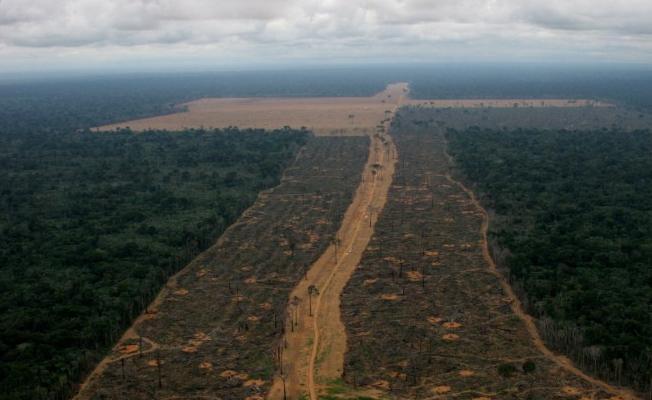 Mahkeme Amazonlar'ın madenciliğe açılması kararını durdurdu