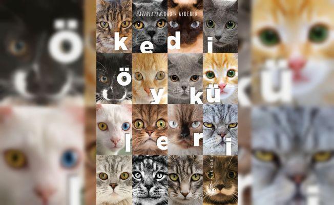 44 yazardan 'kedi öyküleri'