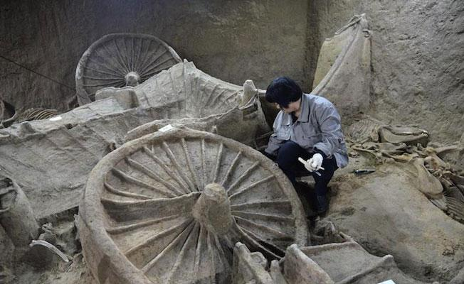 Çin'de 2400 yıllık at iskeletleri ve arabalar bulundu