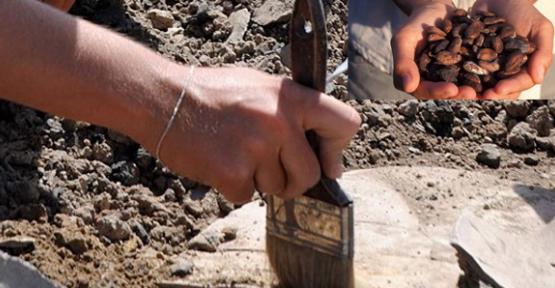 2 bin 500 yıllık çikolata kalıntısı bulundu