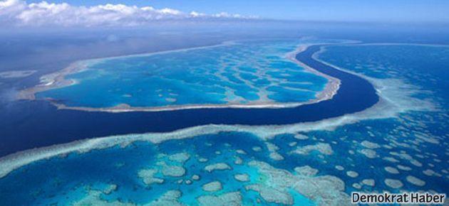 ABD'den Büyük Mercan Resifi'ne 4 bomba