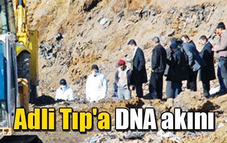 Adli Tıp'a DNA akını