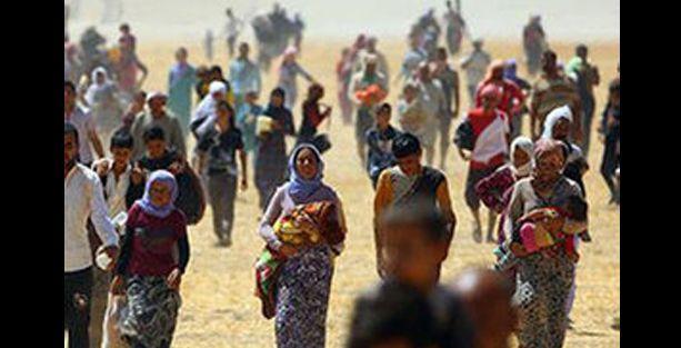 Af Örgütü: Ezidilere yapılanlara uluslararası tepki yetersiz