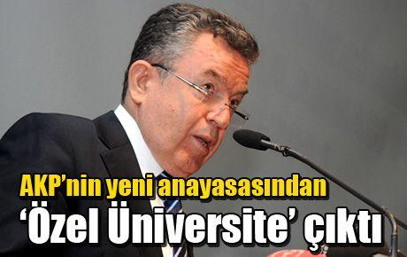 AKP'nin yeni anayasasından 'Özel Üniversite' çıktı
