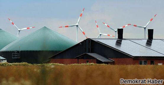 Almanya'da elektrik yeşillendi