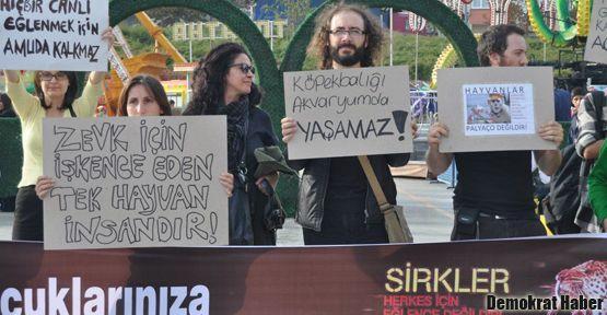 Ankara Sirki karşıtları yarın Gökçek'e gidiyor!
