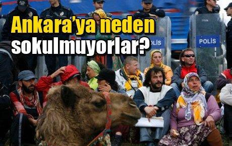 Ankara'ya neden sokulmuyorlar?