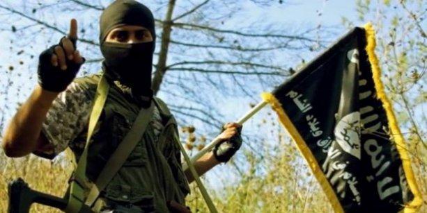 Avusturya'da IŞİD operayonu: 20 gözaltı