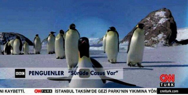 Aydın Doğan: Gezi sırasında CNN Türk'te penguen gösterilmesi tamamen şapşallık