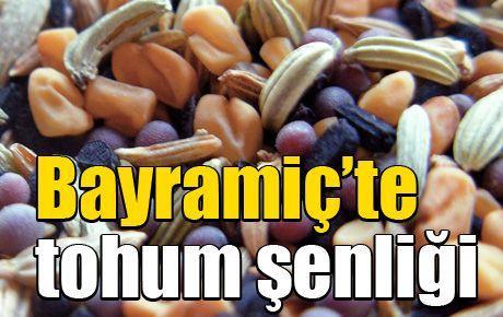 Bayramiç'te tohum şenliği