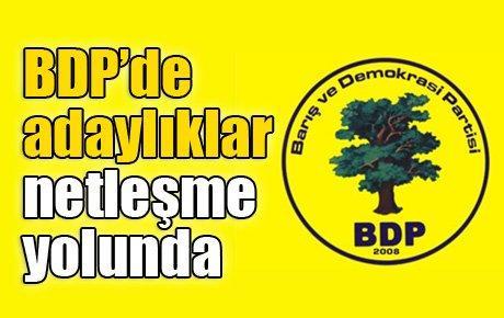 BDP'de adaylıklar netleşme yolunda