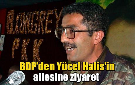 BDP'den Yücel Halis'in ailesine ziyaret