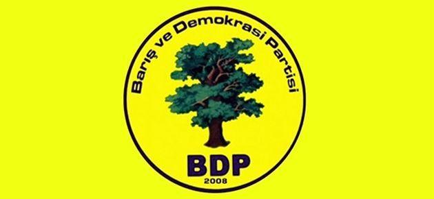 BDP'nin eşbaşkanlık sistemi nasıl işleyecek?