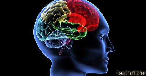 Beyinde kanalizasyon sistemi keşfedildi