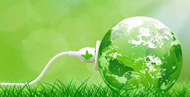 Bitkiler elektrik üretiyor