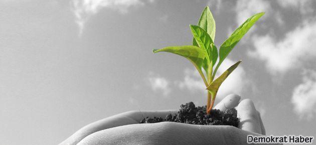 Biyo-ekonomi değil, genetiği değiştirilmiş ürün pazarı