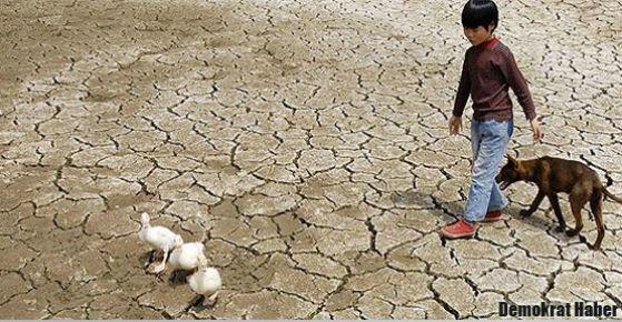 BM raporu: Küresel ısınmadan insan sorumlu