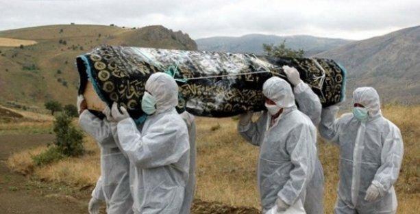 İlk Ebola hastası, virüsü yarasadan mı kaptı?