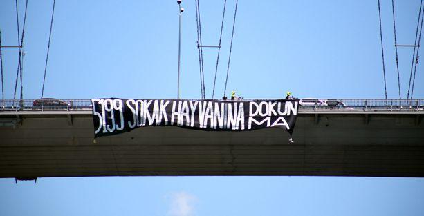 Boğaz Köprüsü'ne hayvan hakları için pankart asıldı