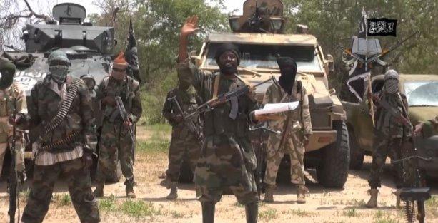 '180 Boko Haram üyesi öldürüldü'