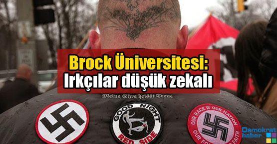 Brock Üniversitesi: Irkçılar düşük zekalı