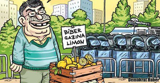 Bu limoncuyu tanıdınız mı?