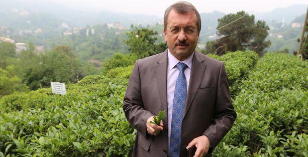 Çaykur Genel Müdürü: Kürtlere Türk çayı içireceğiz