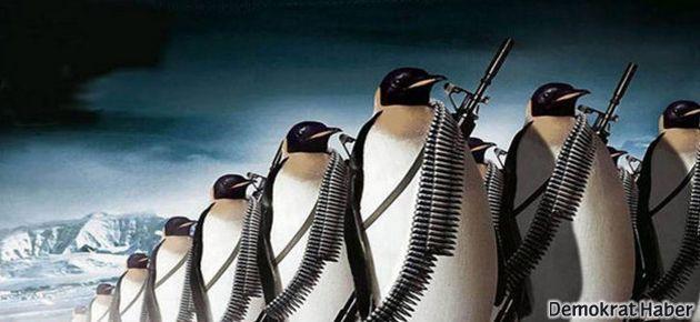 CNN Türk penguen işgali altında