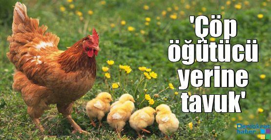 'Çöp öğütücü yerine tavuk kullanın'