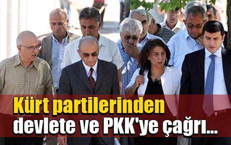 'Devlet de PKK de silahları susturmalı'
