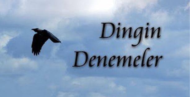 'Dingin Denemeler'