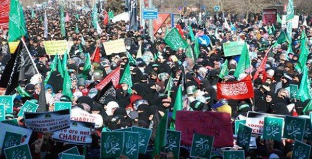 Diyarbakır'da 100 bin kişilik Charlie Hebdo protestosu