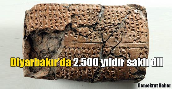 Diyarbakır'da 2.500 yıldır saklı dil