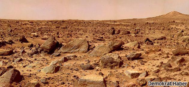 Dünya'ya Mars'tan mı geldik?