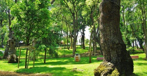 Emirgan Korusu'nun yanındaki yeşil alan AVM ve rezidans için satılıyor