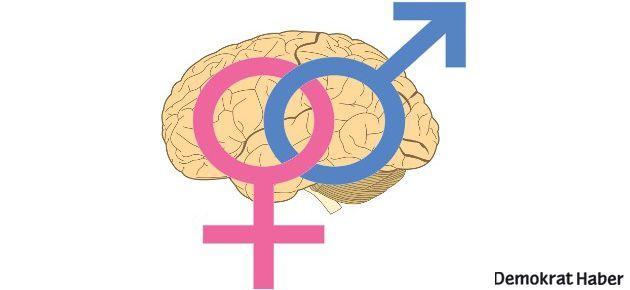 Erkek ve kadın beyinlerinin sinir bağlantıları farklı
