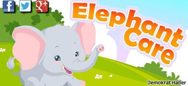 Fil Temizliği Oyunu