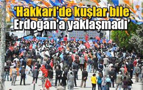 'Hakkari'de kuşlar bile Erdoğan'a yaklaşmadı'