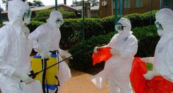 Hatay'da Ebola virüsü paniği