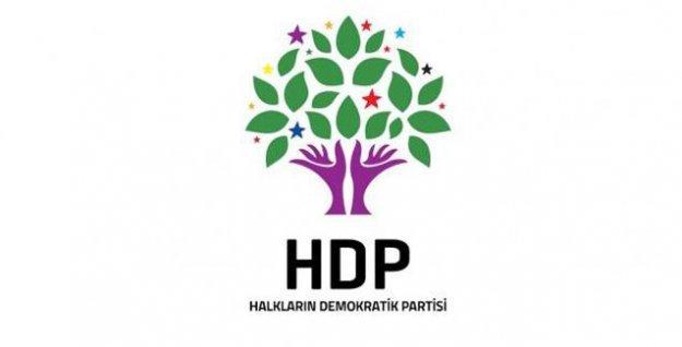 HDP 'bütün renkleri' Meclis'e taşıdı... İşte o isimler