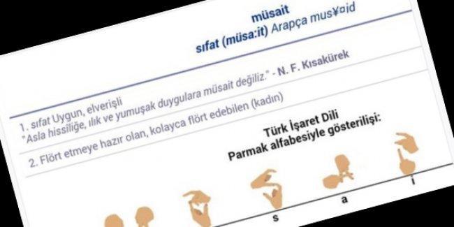 HDP, TDK'nin cinsiyetçi ifadelerini Meclis'e taşıdı